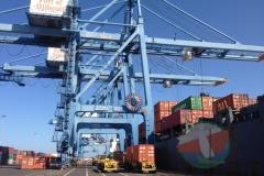 Terminal Container rail view